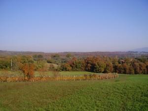 le campagne ed i colori d'autunno