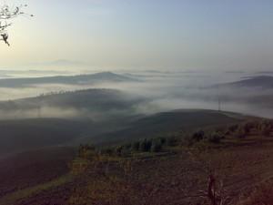 Nebbia a San Martino in Grania