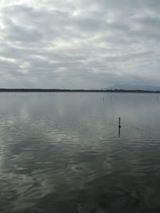 cielo a pecorelle….sul lago di Burano(OASI WWF)