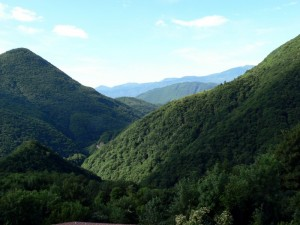 La valle Intrasca vista da Intragna