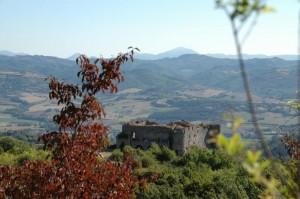 Castel Procoio