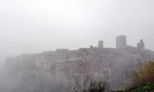 Stormi di Uccelli Nella Nebbia
