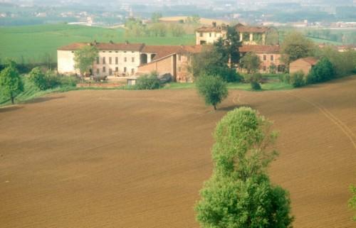 San Salvatore Monferrato - Il ritorno della primavera a San Salvatore