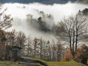 Nebbia a villa Bellesi