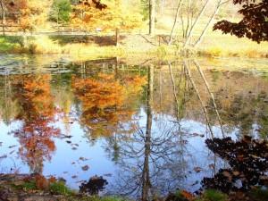 L' autunno si specchia nel lago