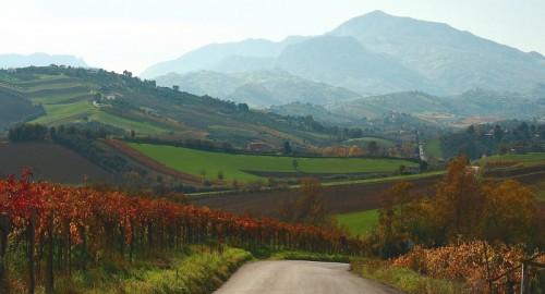 Nocciano - La strada tra i campi