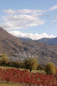 Panorama di Castionetto di Chiuro da Ponte in Valtellina