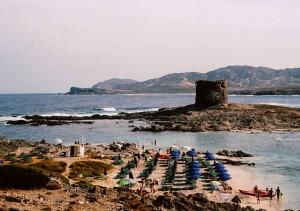 La Pelosa, La Piana e L'Asinara