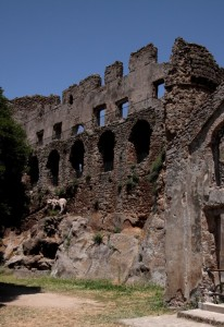 Ruderi del Castello di Monterano abbandonata