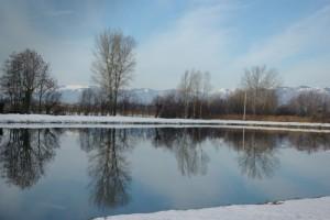 Riflessi nel laghetto di pesca sportiva