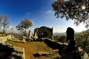 I resti di Canossa