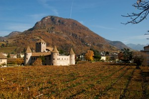 Il Castello e la sua vigna