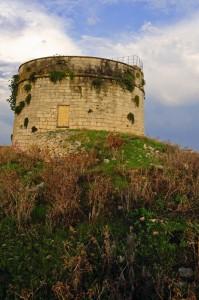 torre e spine