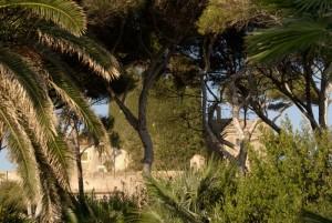 Castello odescalchi 4