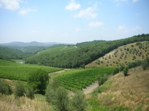 Radda in Chianti - Vista I