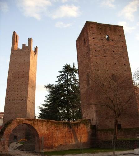 Rovigo - Torre Donà e Torre Grimani
