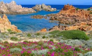 A Calarossa la natura trionfa nei colori