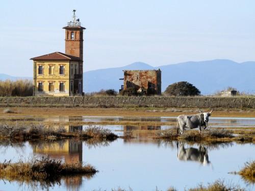Grosseto - Parco della Maremma-Torre avvistamento