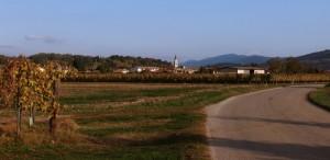 Farra d'Isonzo