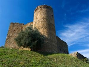 Castello Aldobrandesco - n.3