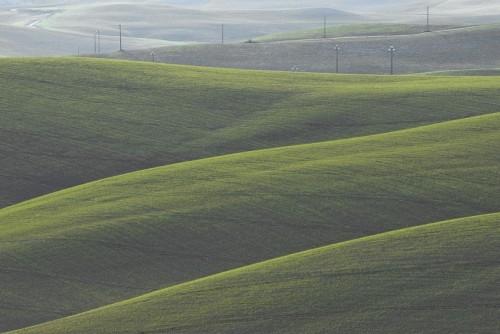 Lajatico - Dune Verdi