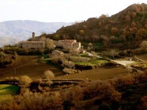 vicariato - pietrarubbia