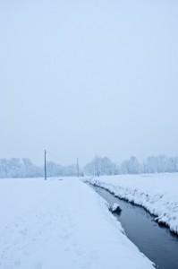 neve cascinazza