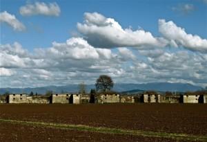 Il bunker e il cielo