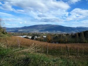 Veduta dalle vigne dal paese delle fiabe.