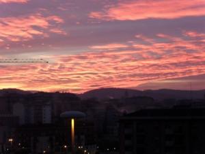 Petali rosa nel cielo