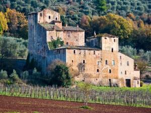 Toiano. Castello di Palazzaccio. n. 2
