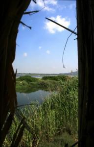 sbirciando dalle postazioni per il birdwatching