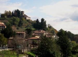 Calomini