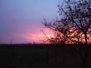 tramonto su tipica struttura agricola