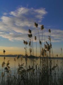 il lago e il suo tramonto
