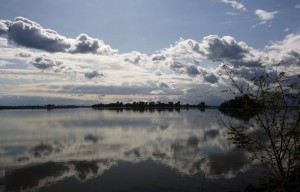 riflessi autunnali in laguna
