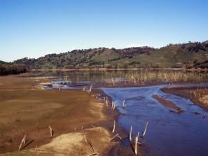 Lago dell'Angitola