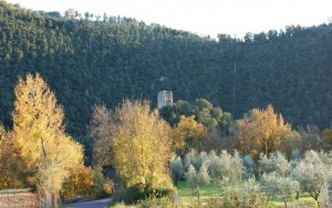 Rocca Baldesca