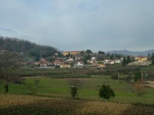 Bernaga