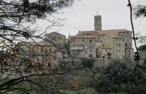Castelnuovo di Val di Cecina - tra le fronde