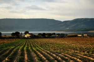Oschiri: panorama agreste lungo il Lago