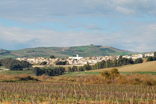 Salaparuta - La patria del buon vino