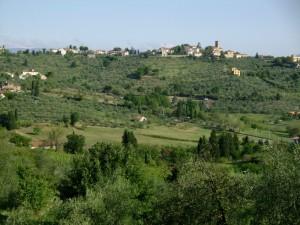 La campagna di Tizzana.