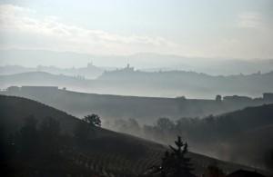 Tra vini e castelli