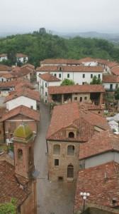 i tetti di Cortanze