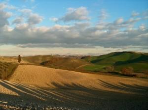 Un timido sole invernale coccola la campagna 2