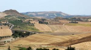 Giuffarruni (campagna Nissena)