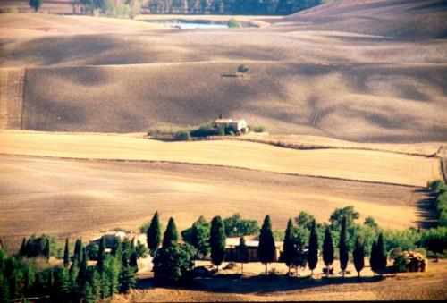 Pienza - Estate colline Pientine