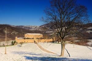 Golaso e la prima neve 2