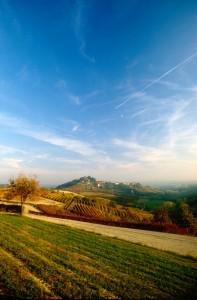 Pino d'Asti e la campagna